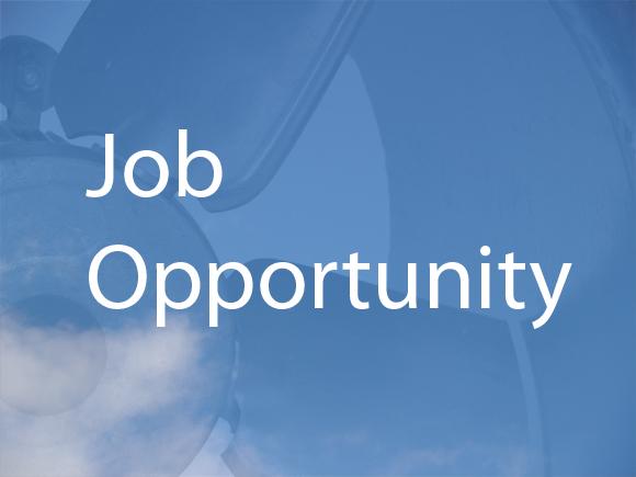 Job Vacancies In Our IT Team